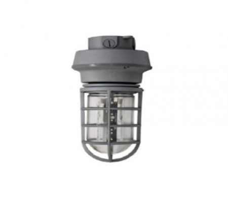 J-LED Jelly Ceiling Mount Style DC Fixture w/ 5W Lamp